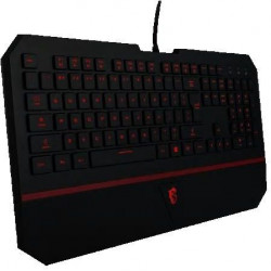 MSI Interceptor GAMING Keyboard 7 colour DS4100
